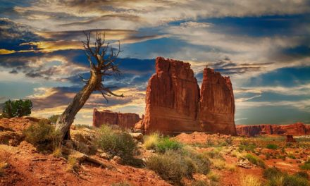 Bryce Canyon National Park: Key Information and Guide