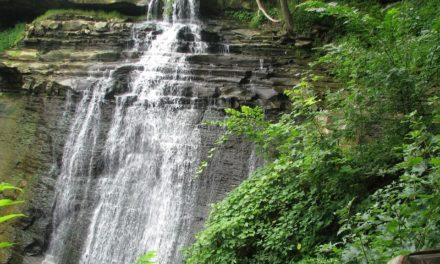 Cuyahoga Valley National Park: Information and Guide