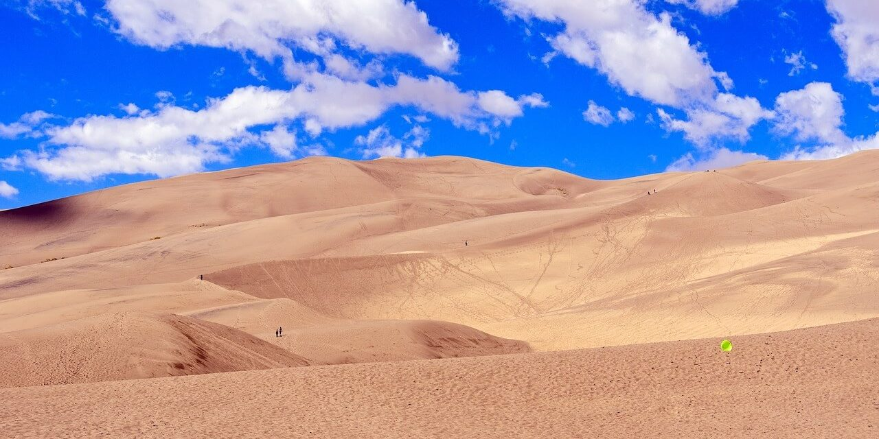 Desert Safari: Great Sand Dunes National Park