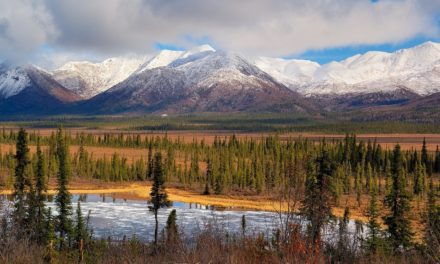 The Uniqueness of Wrangell–St. Elias National Park and Preserve