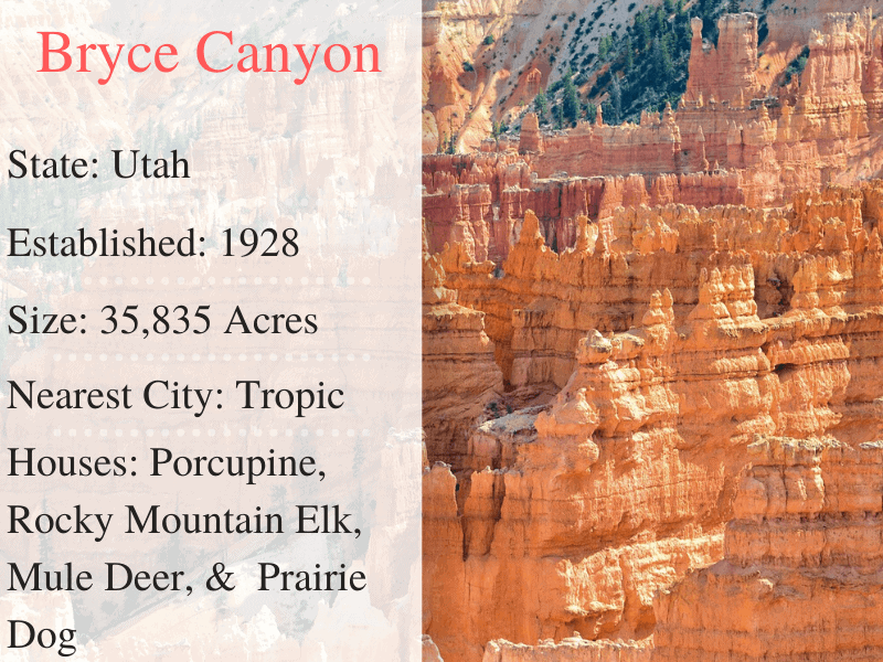 Bryce National Park Facts