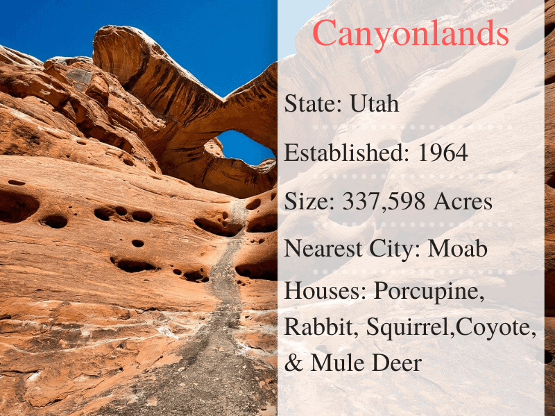 Canyon lands National Park Facts