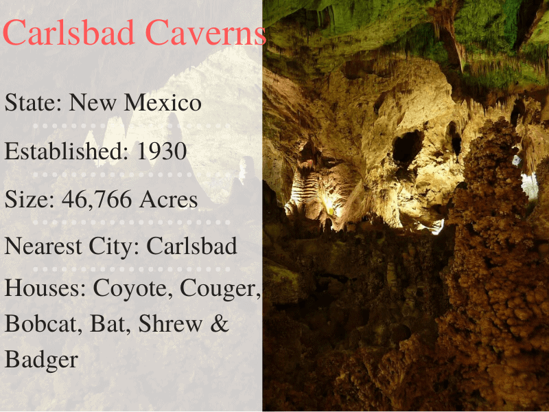 Carlsbad Caverns National Park Facts