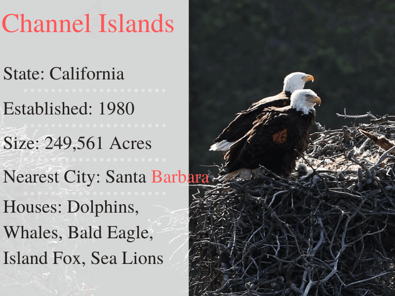 Channel Islands National Park Facts