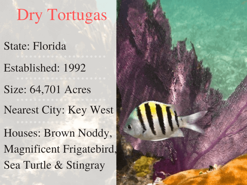 Dry Tortugas National Park Facts